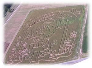 2005_Maze